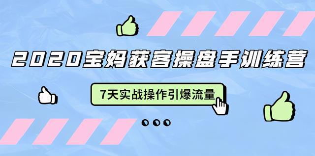 """020宝妈获客操盘手训练营:7天实战操作引流宝妈粉,引爆宝妈流量"""""""