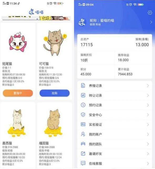 """揭秘:号称零撸的""""养猫赚钱""""骗局套路"""